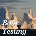 Bone Testing
