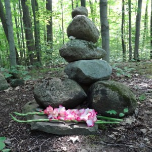 Vic's cairn in the forest