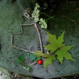 Liz's forest offering