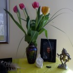 May tulips for my altar
