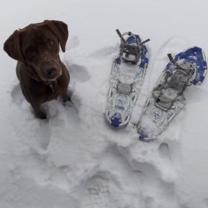 Willow & my snowshoes ready for a walk