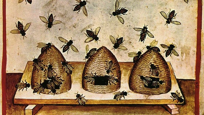 Beekeeping, 14th Century, wikipedia