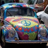 Hippie_bug