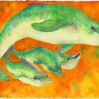 dolphin Lisa Baechtle